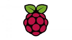 Raspberry-PI-Logo-01